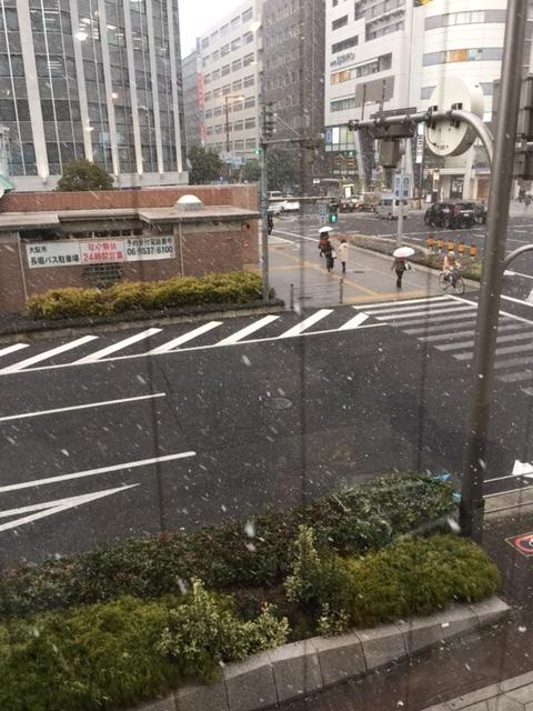 雪_f0202682_19383000.jpg