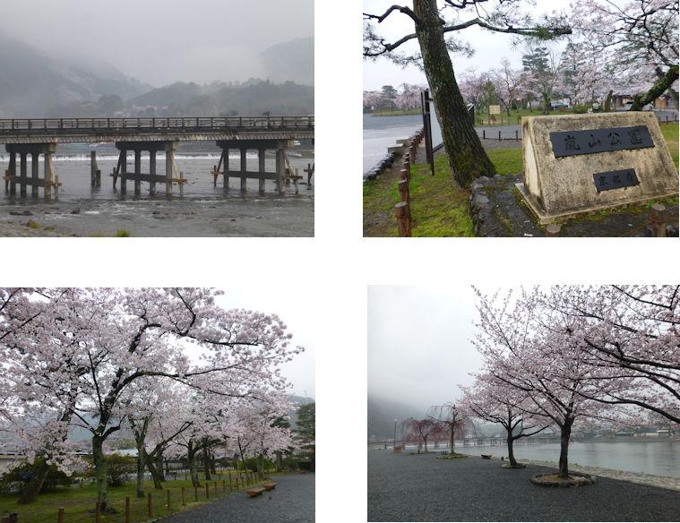 京都観桜編(19):嵐山公園(15.3)_c0051620_837133.jpg