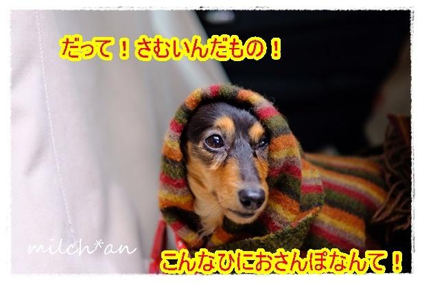 b0115642_19570483.jpg