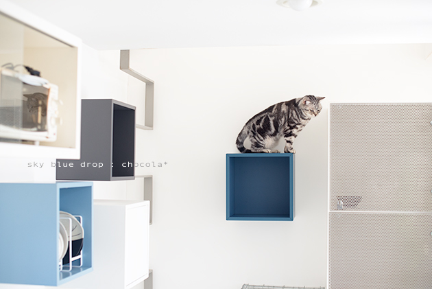 IKEAの家具で猫仕様その後2_d0355575_11333701.jpg