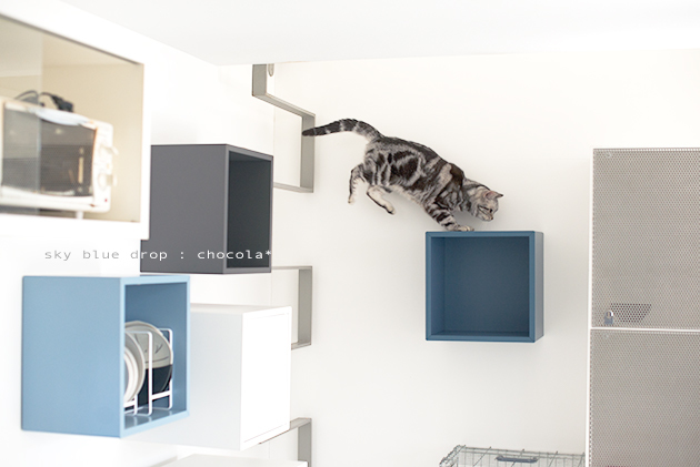 IKEAの家具で猫仕様その後2_d0355575_11333748.jpg