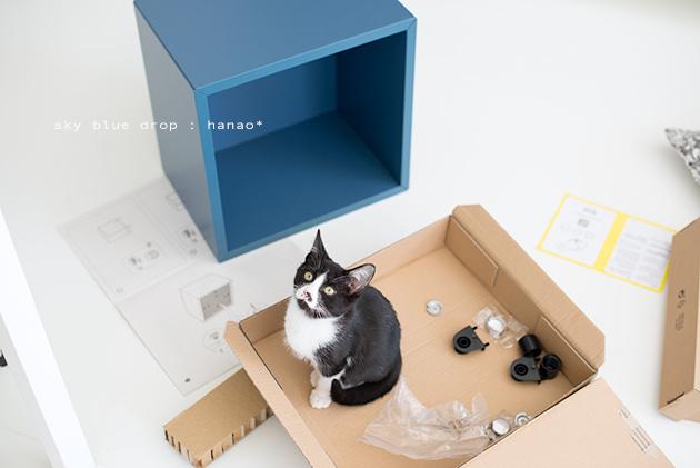 IKEAの家具で猫仕様その後2_d0355575_11333755.jpg
