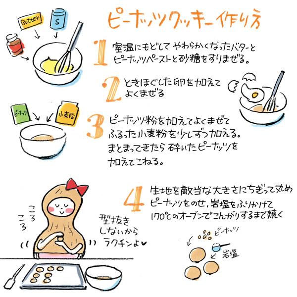【手作りお菓子】ピーナッツ粉でピーナッツクッキー作ったヨ【岩塩とバターピーナッツが良いアクセント】_d0272182_13290480.jpg