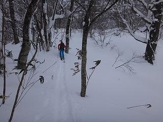 荘川の火山1379m新雪滑降_e0064783_21081993.jpg
