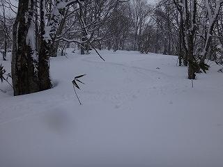 荘川の火山1379m新雪滑降_e0064783_21090149.jpg