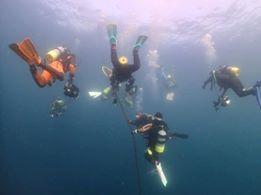 1月28日 沖縄ダイビングセンターツアー2日目_f0151886_17471051.jpg