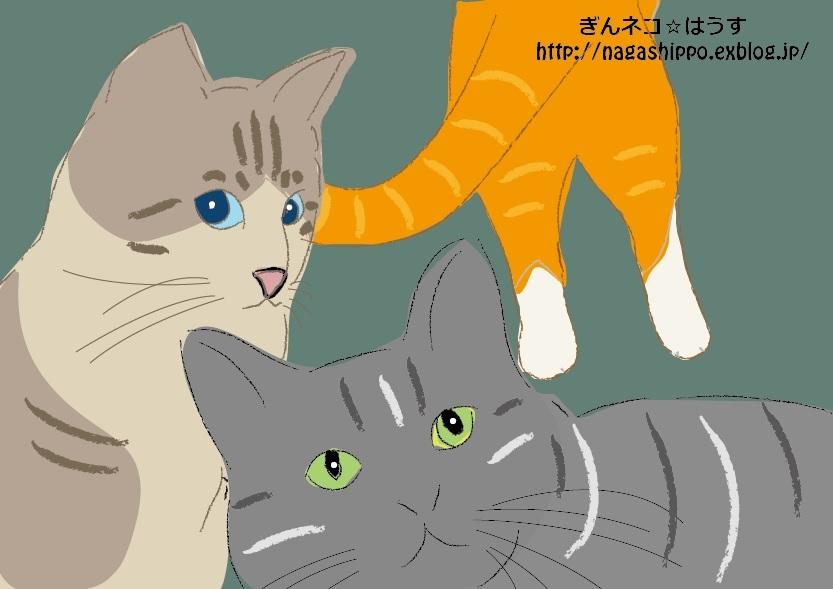 ぎんネコ☆はうすのネコの塗り絵_a0333195_20515735.jpg