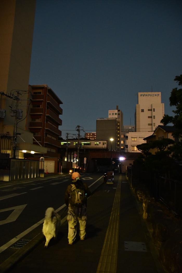 ジロちゃん祭り♪ (≧∇≦)_c0049299_20205735.jpg