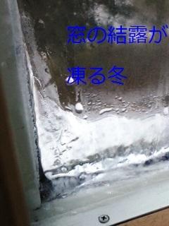 b0200310_11010334.jpg