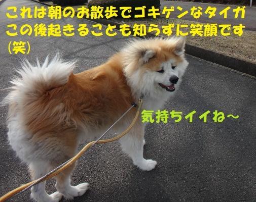 f0121712_08513894.jpg