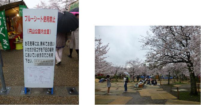 京都観桜編(22):円山公園・知恩院(15.3)_c0051620_17213235.jpg