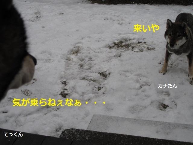 f0143123_09395030.jpg