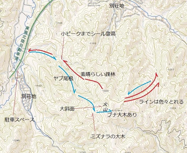 荘川の火山1379m新雪滑降_e0064783_09054316.jpg