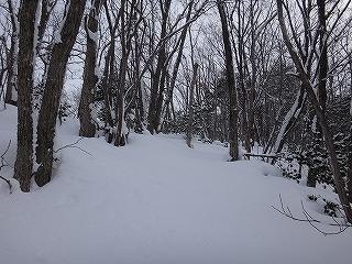 荘川の火山1379m新雪滑降_e0064783_20565355.jpg
