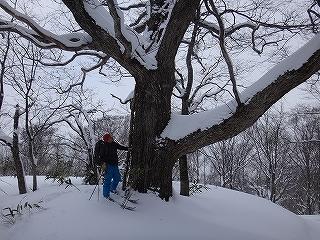 荘川の火山1379m新雪滑降_e0064783_20574958.jpg