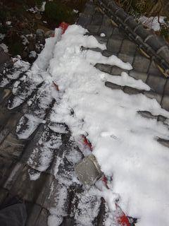 杉並区の成田東で雪下ろし_c0223192_23082034.jpg
