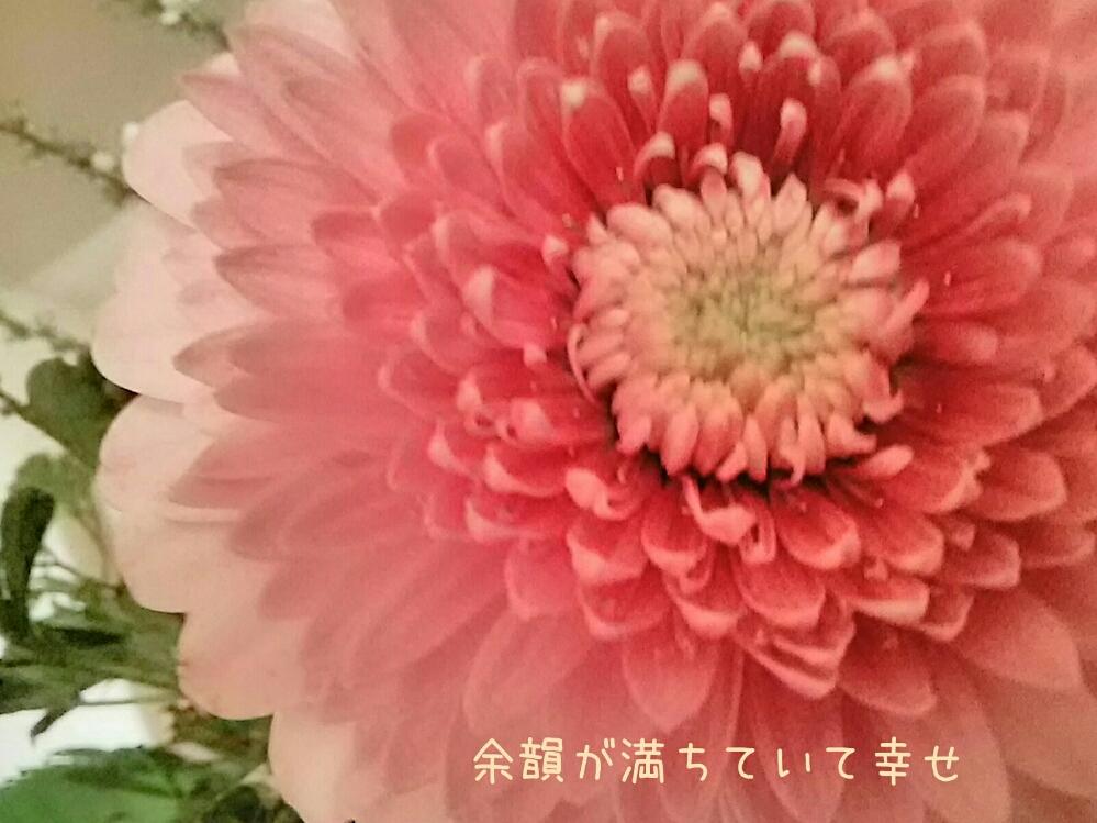 f0024708_10151479.jpg