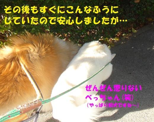 f0121712_09030302.jpg