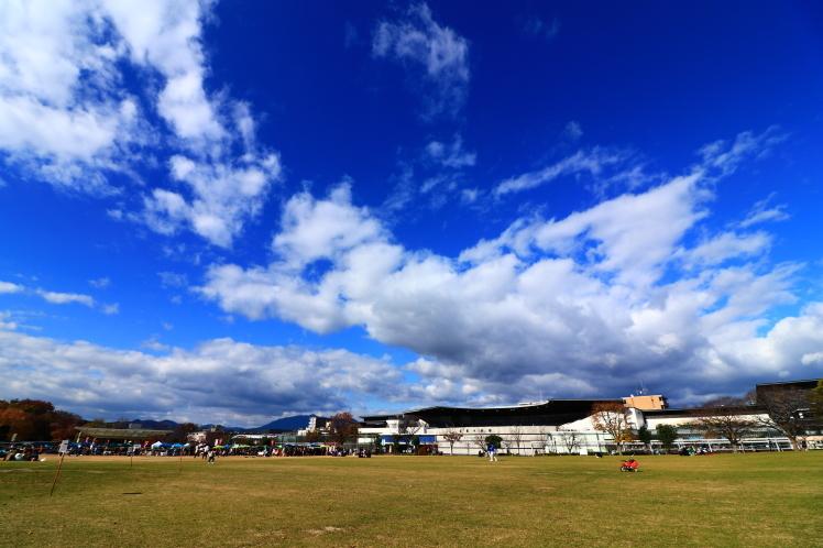 梅小路公園 京都観光_f0209122_18155062.jpg