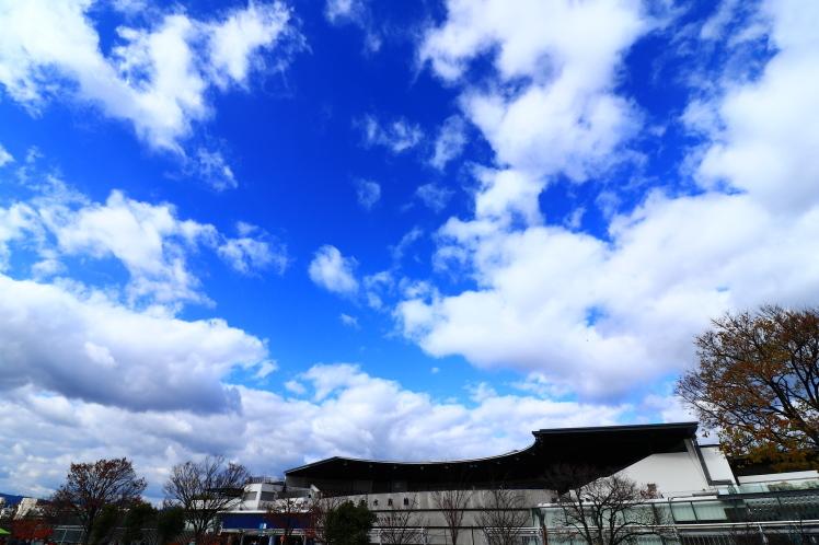 梅小路公園 京都観光_f0209122_18175145.jpg
