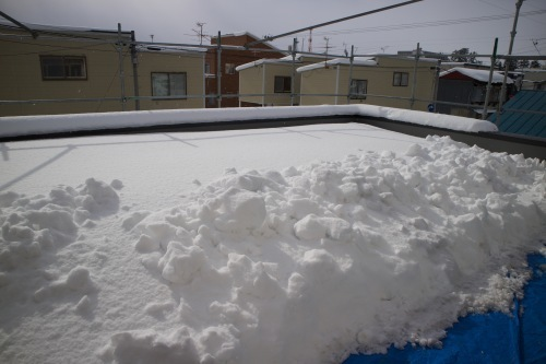 Q1住宅弘前:芝置屋根の雪_e0054299_10050029.jpg