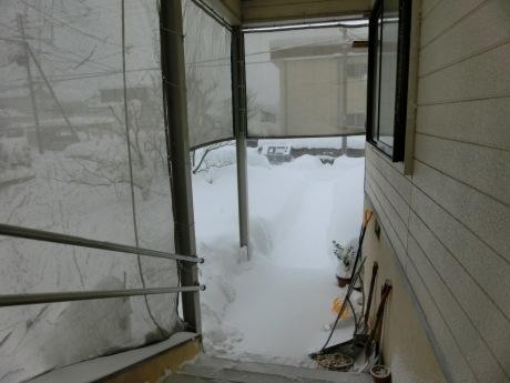 さらに雪-ヤケクソ、または火事場のばか力で_a0203003_10140047.jpg