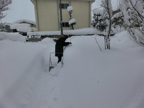 さらに雪-ヤケクソ、または火事場のばか力で_a0203003_10152462.jpg