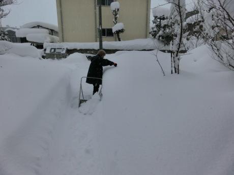さらに雪-ヤケクソ、または火事場のばか力で_a0203003_10154927.jpg