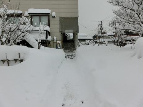 さらに雪-ヤケクソ、または火事場のばか力で_a0203003_10165332.jpg