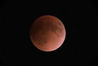 皆既月食と欧州旅行猫_f0255704_22304794.jpg