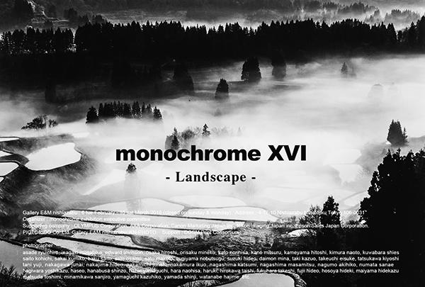 monochrome XVI「Landscape」2月6日(火)から始まります!_b0194208_23434224.jpg