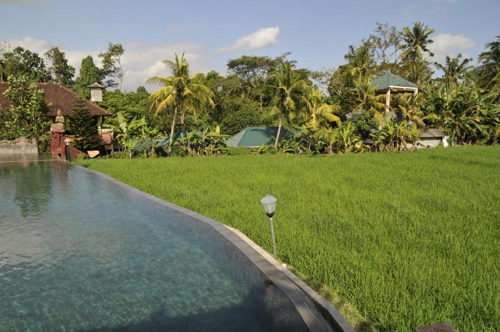 バリ島が大好きなんです。_e0367330_20551710.jpg