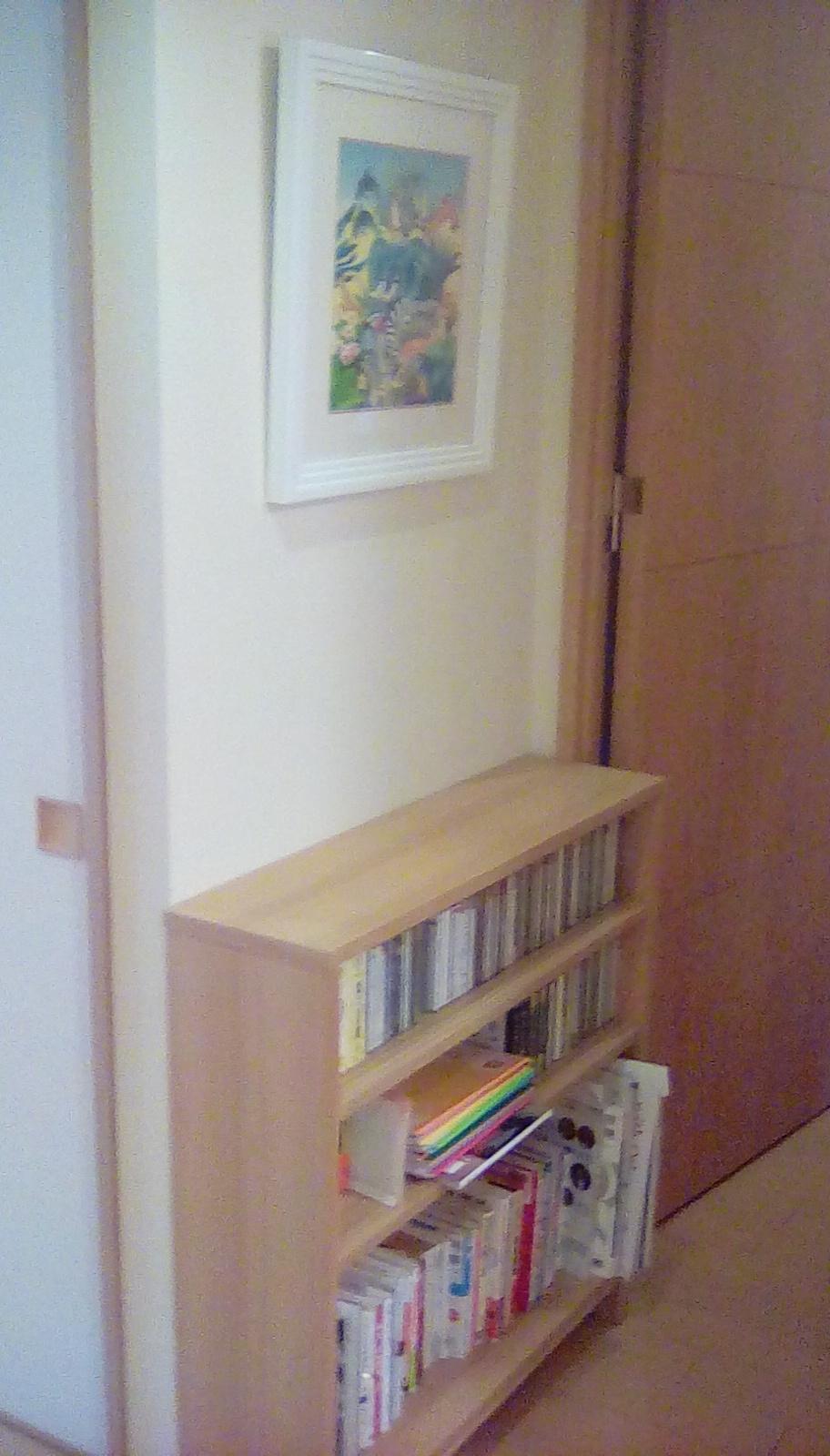 廊下の本棚_e0379544_00110093.jpg