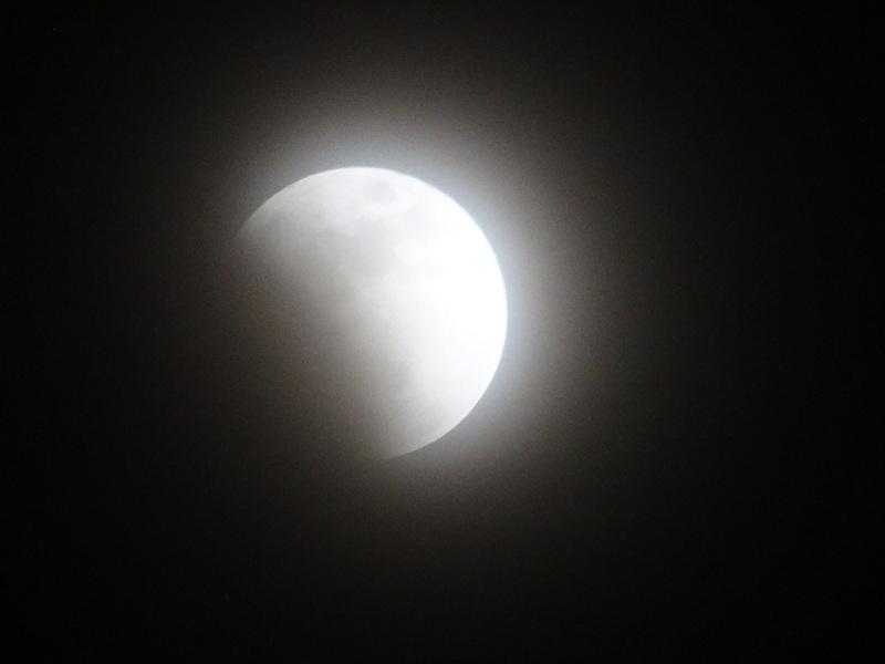皆既月食が見られました・・・岬町淡輪_c0108460_23065855.jpg