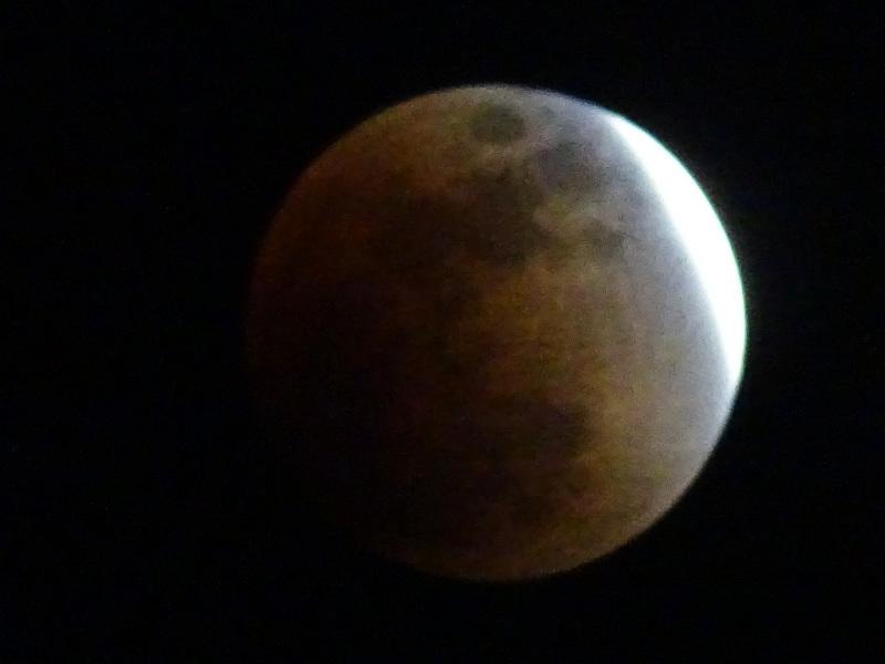 皆既月食が見られました・・・岬町淡輪_c0108460_23075280.jpg