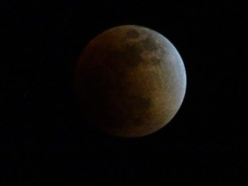 皆既月食が見られました・・・岬町淡輪_c0108460_23080919.jpg