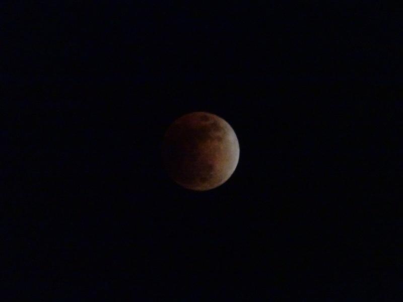 皆既月食が見られました・・・岬町淡輪_c0108460_23082320.jpg