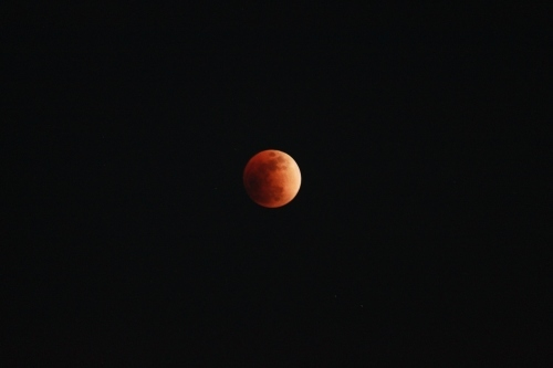 Blood moon_b0117564_23242407.jpg
