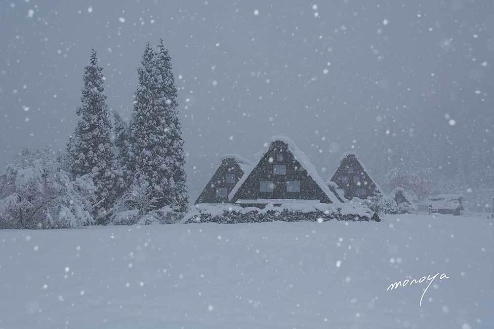 雪の白川郷_c0085877_06043432.jpg
