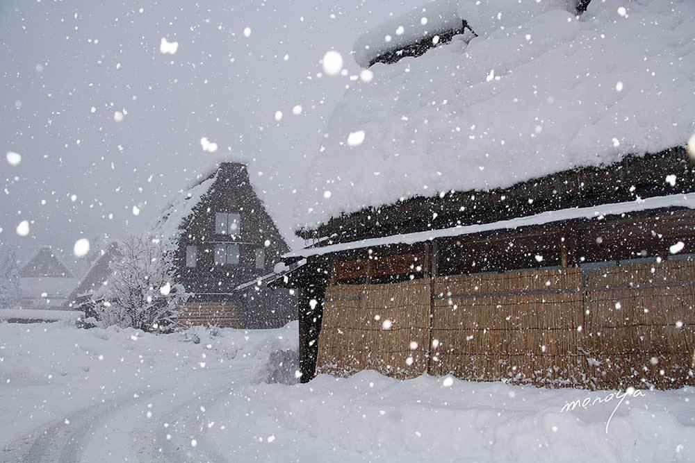 雪の白川郷_c0085877_06044055.jpg