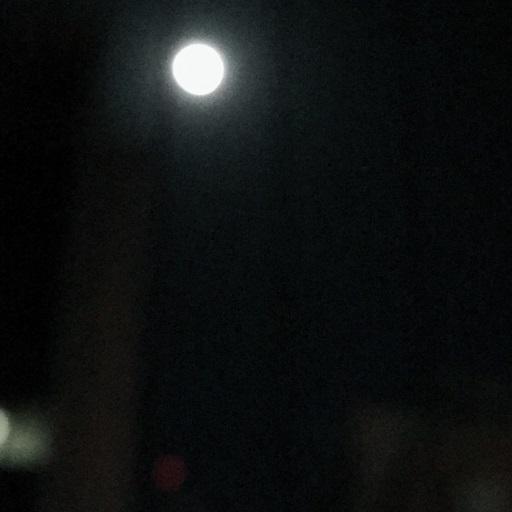 皆既月食ですねえ_f0202682_21343123.jpg