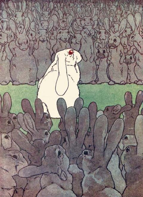 Harry Rountreeのウサギ絵_c0084183_1471460.jpg