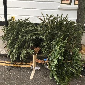ガレットデロワとチャーチルアームのもりもりクリスマスツリー_f0238789_21430501.jpg