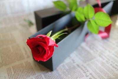 フラワーバレンタイン_a0077025_181563.jpg