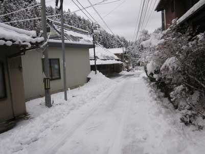 久々にまとまった雪が降りました。_c0194003_09150400.jpg