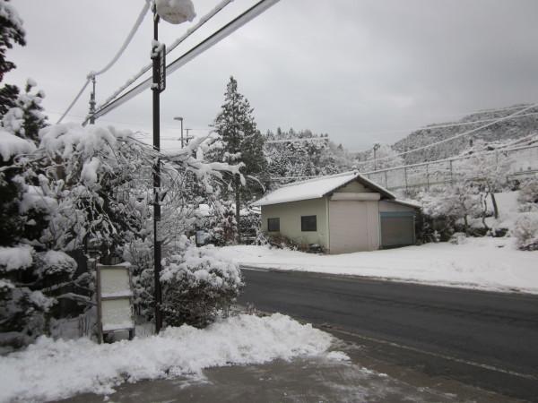久々にまとまった雪が降りました。_c0194003_09172048.jpg