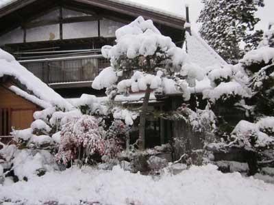久々にまとまった雪が降りました。_c0194003_09190224.jpg