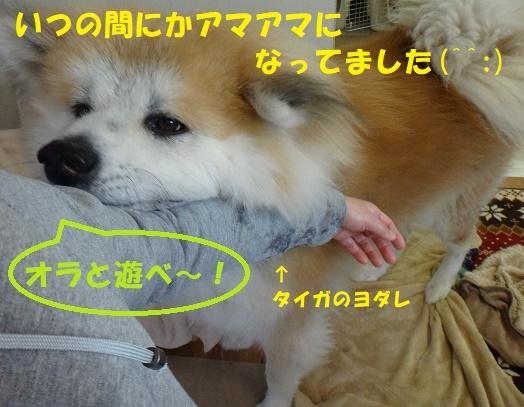 f0121712_08501437.jpg