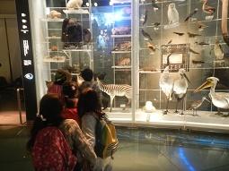国立科学博物館 in 上野_f0153418_09392420.jpg