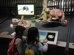 国立科学博物館 in 上野_f0153418_09394438.jpg
